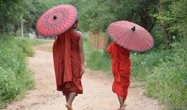 Myanmar - Novice