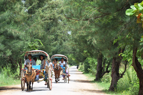 ‌Innwa horse cart ride