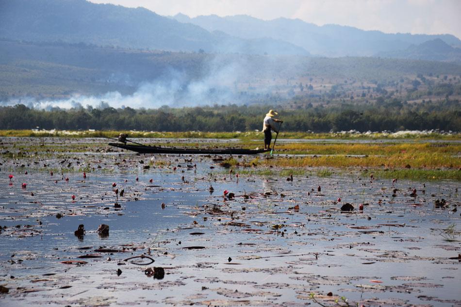 Inlay lake Shan State Myanmar (4)